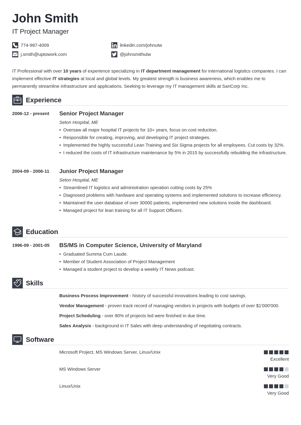 Professional CV Template Iconic